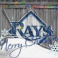 Tampa Bay Rays by Joe Hamilton