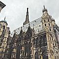 Vienna Austria by Howard Stapleton