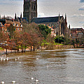 Worcester Cathedral And Swans by Roy Pedersen