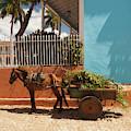 Cuba, Sancti Spiritus Province by Walter Bibikow