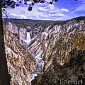 661 Sl Yellowstone Canyon  by Chris Berry