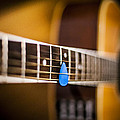6th Fret by Chris Halford