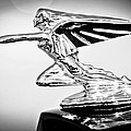 1935 Packard Hood Ornament -0295bw by Jill Reger