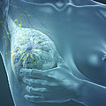Breast Examination by Science Picture Co