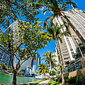 Downtown Miami Brickell Fisheye by Raul Rodriguez