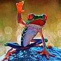 Exotic Frogs by Gunter  Hortz