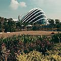 Garden By The Bay by Songquan Deng