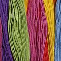 Multicolored Embroidery Thread In Rows by Jim Corwin