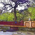 Near Entrance To Hindu Temple Of Mattan by Ashish Agarwal