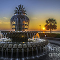 Pineapple Fountain At Sunrise by Dale Powell