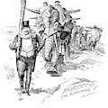 Roosevelt Cartoon, 1906 by Granger