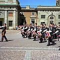 Stockholm Guard Change by Ted Pollard