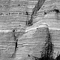 New Mexico - Tent Rocks by Steven Ralser