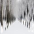 Winter Road by Mats Silvan