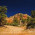 705p Zion National Park by NightVisions