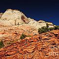 708p Zion National Park  by NightVisions