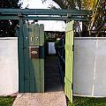717 Gate Open Coronado California by Sharon French