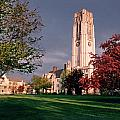 7535 University Of Toledo Bell Tower by Chris Maher