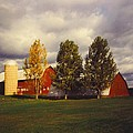 Barns by Robert Floyd