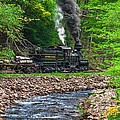 Cass Scenic Railroad by Mary Almond
