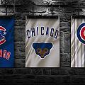 Chicago Cubs by Joe Hamilton