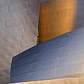 Disney Concert Hall by Robert Jensen
