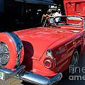 Ford Thunderbird by Carol Ailles
