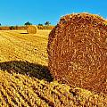 Hay by Christopher Hoffman