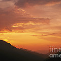 Sunset by David Davis