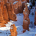 Sunset Point Bryce Canyon National Park by Fred Stearns