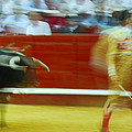 Tauromaquia Bull-fights In Spain by Guido Montanes Castillo
