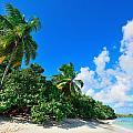 Virgin Islands Beach by Songquan Deng