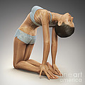 Yoga Camel Pose by Science Picture Co