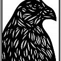 Bruh Eagle Hawk Black And White by Eddie Alfaro