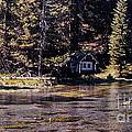 894 Sl A River Runs By by Chris Berry