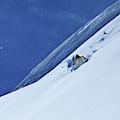 A Athletic Skier Rips Fresh Deep Powder by Patrick Orton