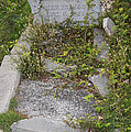 Key West Cemetery by Carol Ailles