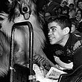 Lassie by Retro Images Archive