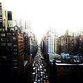 Manhattan by Natasha Marco
