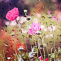 Raindrops by Heike Hultsch