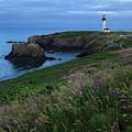 Usa, Oregon, Newport, Yaquina Head by Rick A Brown