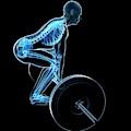 Weight Training Posture by Sebastian Kaulitzki
