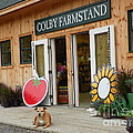 #923 D720 Colby Farm Stand by Robin Lee Mccarthy Photography