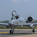 A-10 Thunderbolt Warthog by Dale Powell