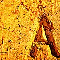 A As In Alphabet  by Chris Berry