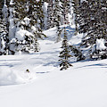 A Backcountry Skier A Turn Near Ymir by Craig Moore