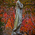 A Beautiful Angel by Linda Unger