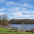 A Bench With A View by Tom Gari Gallery-Three-Photography