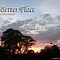 A Better Place by Peter Hutchinson