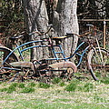 A Bicycle Built For Two by Bobby Cole